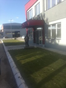 Tepih trava ZEDEKO