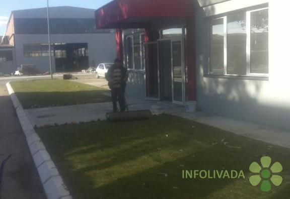 Tepih trava -busen rolna