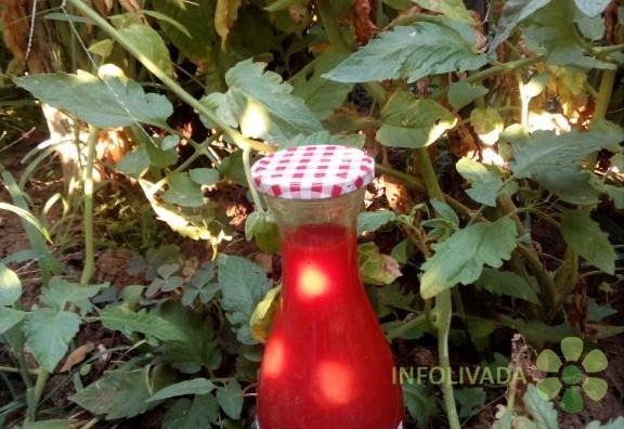 Domaći kuvani paradajz